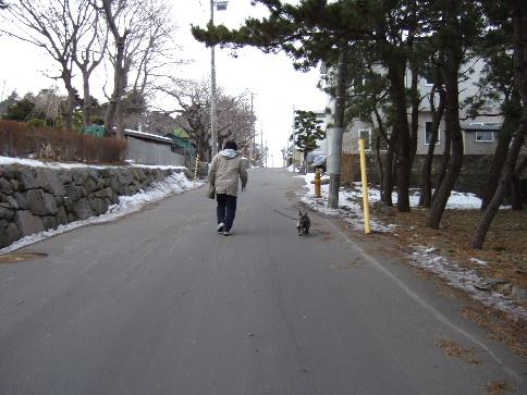 20080212_022